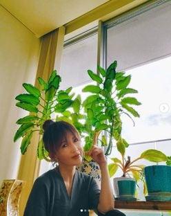 """工藤静香、""""子宝草""""をバックに「レアなお団子ヘア」をお披露目"""