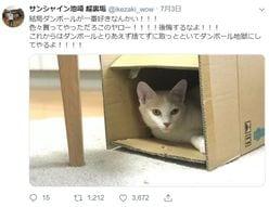 サンシャイン池崎「悪口だらけ」のSNS裏アカ発覚も、なぜか好感度急上昇!?