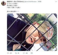 """クロちゃんの""""名言&イケメン風ツイート""""に大反響"""