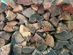 「その薪、ちゃんと乾いてる?」焚き火のデキを左右する新基準「含水率」【焚き火の話vol.6】