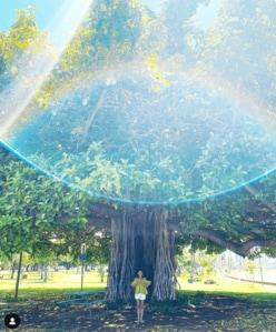 """SHIHO、ハワイで撮影した""""奇跡の1枚""""に「涙がでる」「幻想的」と感動の嵐"""