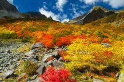 一度は訪れたい! 豪華絢爛な山岳紅葉 涸沢カール〈長野県〉