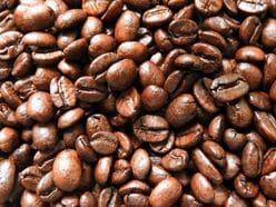 川島明「1周して紅茶」最高級ゾウふんコーヒーの味わいを語る