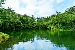 『池の水ぜんぶ抜く』の「アリゲーターガー」捕獲にSNS騒然!