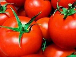 トマトを食べるだけで「脂肪燃焼&アンチエイジング」!