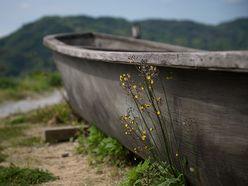 「北朝鮮木造船」漂着ラッシュの怪