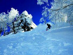 竜王スキーパーク|山頂で1930mの標高が魅力距離1000m超ロングランも楽しめる|長野