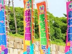 大島優子や高橋みなみも結婚適齢期、稀勢の里引退「AKB48で嫁取り」意外な候補者実名