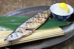 1番人気は寿司ネタの王様!「好きな魚ギョギョ」総選挙