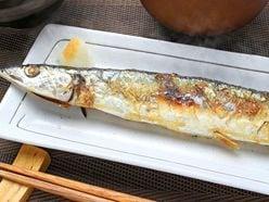 サンマ、マグロ、イカ…「庶民の魚」が日本の食卓からなくなる!?