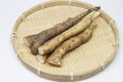 『ザ!鉄腕!DASH!!』、TOKIOの「2年がかり」の自然薯栽培企画に驚嘆!