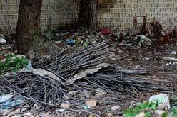 人気声優「ベランダに生ごみ放置」不潔なゴミ屋敷生活が発覚?