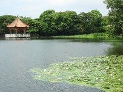 川合俊一「池の水を飲んだ」大学時代の猛烈シゴキ体験を告白