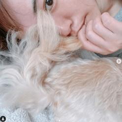 目指すはポスト石田ゆり子!?磯山さやか、ペットアカウントを開設「愛しすぎてシッポの毛を……」