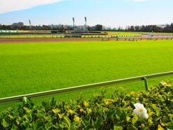 イタリア人騎手ミルコ・デムーロ「すごい感動した」日本競馬を選んだ理由とは?