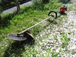 草刈正雄の「ヘタレっぷり」を、娘の紅蘭が暴露