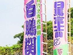 """白鵬「五輪引退」金満親方""""銀座部屋""""プラン"""