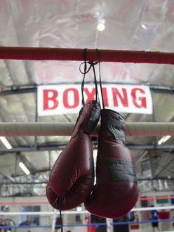 日本男子ボクシング「世界チャンピオン」拳闘カタログ