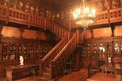 『中居正広のミになる図書館』放送激減にファン困惑