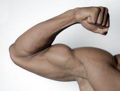 『筋肉体操』武田真治を加藤浩次が危惧「おかしな方向にいってる」