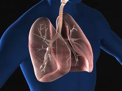 ポイントは下半身! 超簡単「ビンビン呼吸法」トレーニング