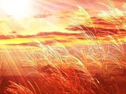 """山口百恵『いい日旅立ち』は3位! 昭和世代が""""令和""""に残したい「昭和歌謡」ランキング"""