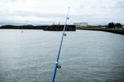「100均で買った釣り竿」で「漁獲高日本一の焼津港」での簡単堤防釣りチャレンジ!気になる釣果は?<br />