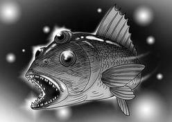 邪気眼!? 「第三の目を持つ魚」がカナダで捕獲される
