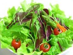 """木村祐一「サラダの概念がひっくり返った」師と仰ぐシェフの""""驚きレシピ"""""""