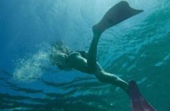 """山本舞香、美ヒップ&美脚むき出し!""""水中水着姿""""に「そのアングルはあかん」"""