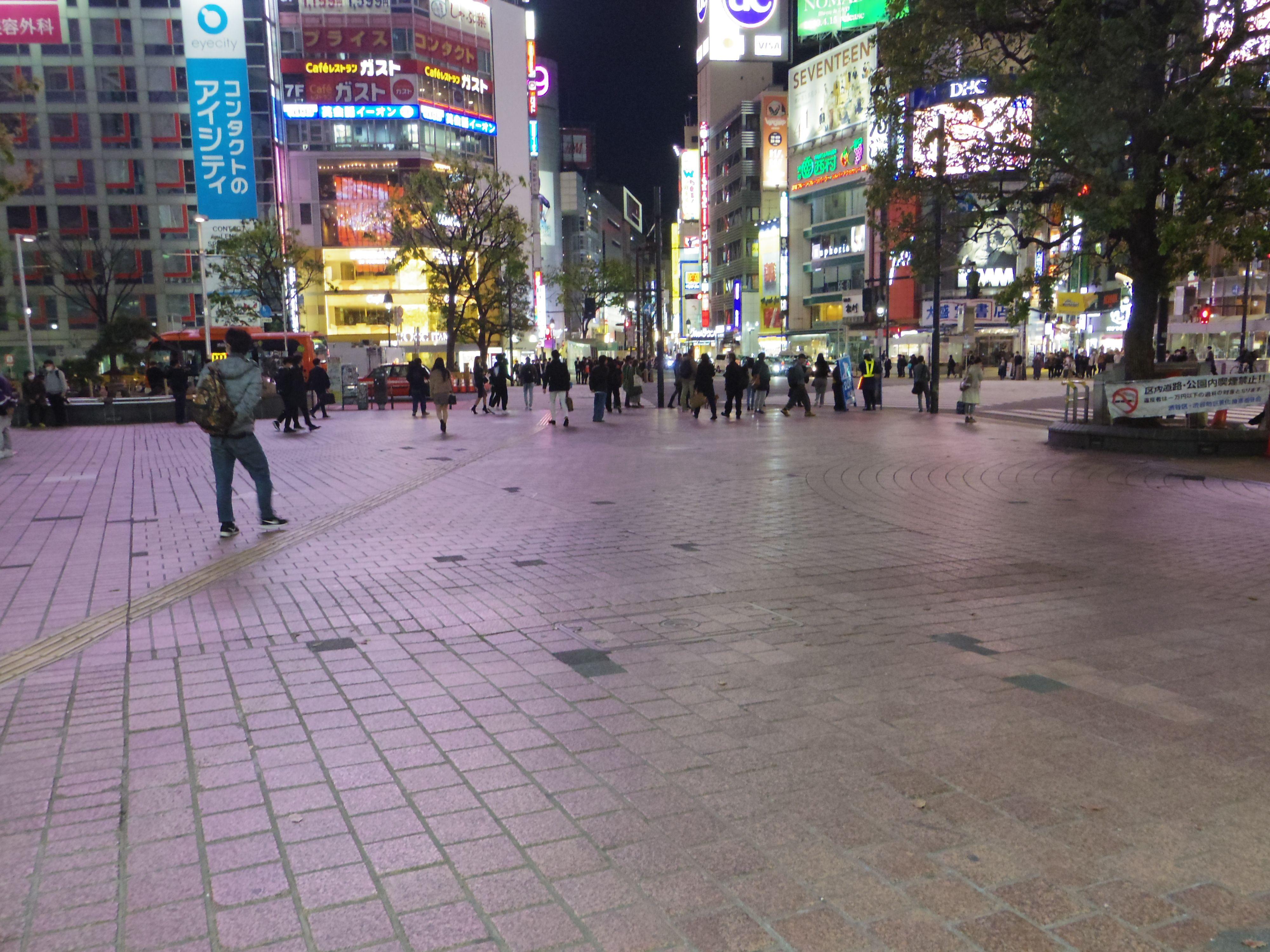 緊急事態宣言発令中「東京の夜の街を歩いてみた」【新宿・渋谷の動画】の画像012